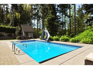 "Photo 47: 2911 146 Street in Surrey: Elgin Chantrell House for sale in ""ELGIN RIDGE"" (South Surrey White Rock)  : MLS®# F1425975"