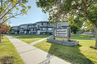 Photo 45: 18 12 TEMPLEWOOD Drive NE in Calgary: Temple Row/Townhouse for sale : MLS®# A1021832