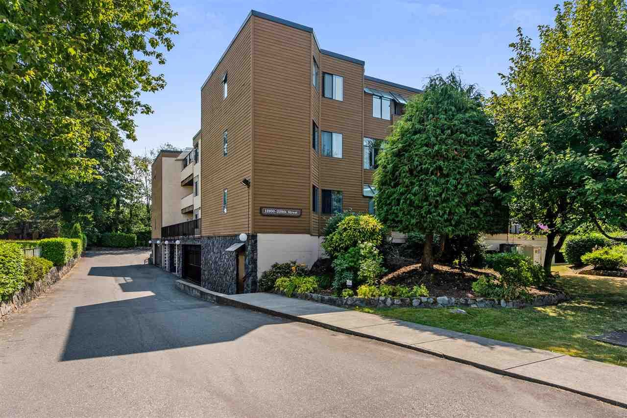 """Main Photo: 8 11900 228 Street in Maple Ridge: East Central Condo for sale in """"MOONLIGHT GROVE"""" : MLS®# R2338780"""