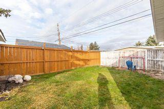 Photo 24: 260 Van Horne Crescent NE in Calgary: Vista Heights Detached for sale : MLS®# A1144476