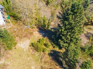 Photo 8: 210 Caledonia Ave in NANAIMO: Na Central Nanaimo Other for sale (Nanaimo)  : MLS®# 823312