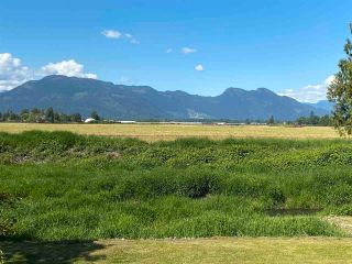 Photo 3: 49155 YALE Road in Chilliwack: East Chilliwack House for sale : MLS®# R2580755