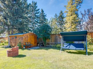 Photo 43: 3711 Underhill Place NW in Calgary: University Heights Detached for sale : MLS®# A1057378