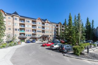 Photo 23: 217 20 DISCOVERY RIDGE Close SW in Calgary: Discovery Ridge Apartment for sale : MLS®# A1015341