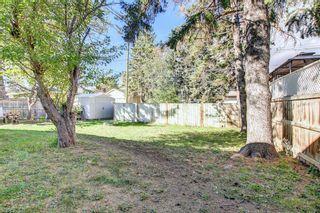 Photo 42: 1223 Richland Road NE in Calgary: Renfrew Detached for sale : MLS®# A1153557