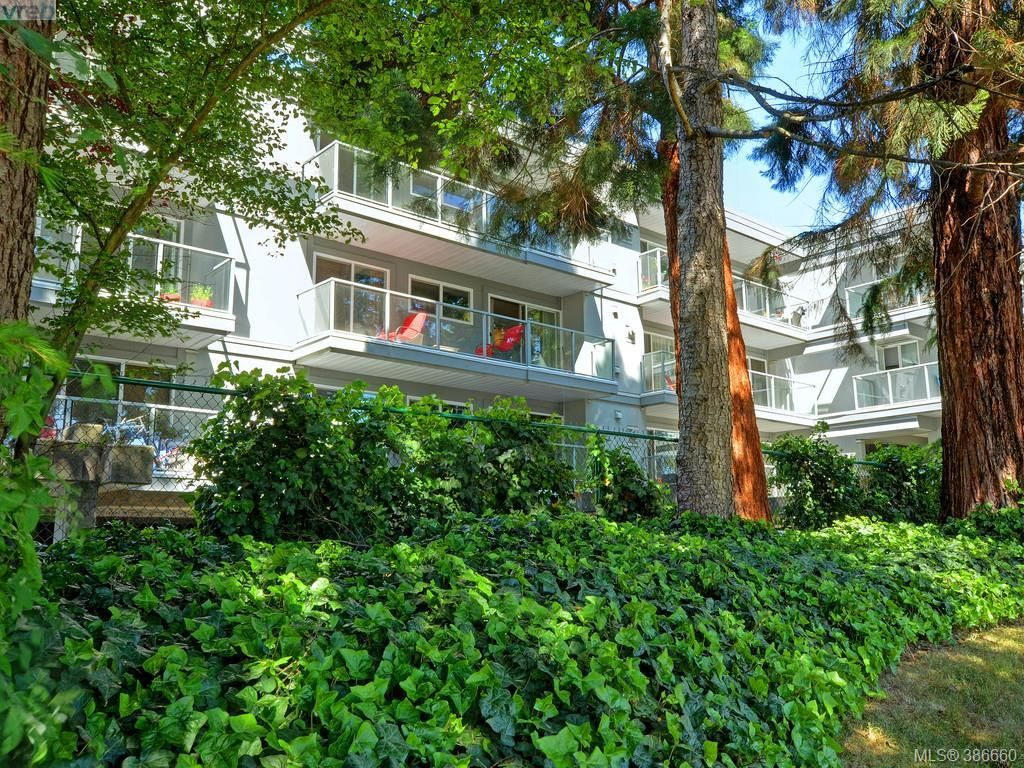 Main Photo: 307 2022 Foul Bay Rd in VICTORIA: Vi Jubilee Condo for sale (Victoria)  : MLS®# 777158
