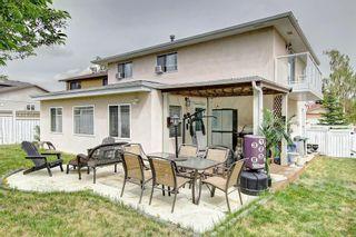 Photo 45: 83 CASTLEFALL Road NE in Calgary: Castleridge Detached for sale : MLS®# C4194335