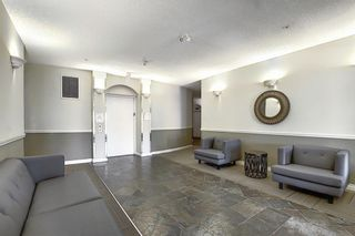 Photo 39: 6401 14 HEMLOCK Crescent SW in Calgary: Spruce Cliff Apartment for sale : MLS®# A1036904