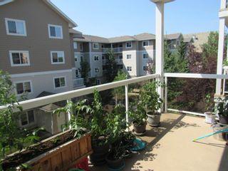 Photo 19: 317 10511 42 Avenue in Edmonton: Zone 16 Condo for sale : MLS®# E4248739