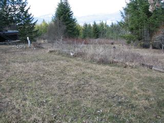 Photo 36: 1563 Kyte Rd in Sorretno: Sorrento House for sale (Shuswap)  : MLS®# 10175854