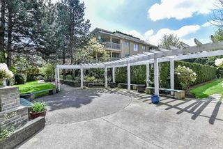 """Photo 25: 210 13733 74 Avenue in Surrey: East Newton Condo for sale in """"KINGS COURT"""" : MLS®# R2555646"""