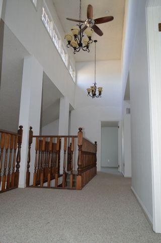 Photo 41: 17603 57 Avenue in Edmonton: Zone 20 House for sale : MLS®# E4234063