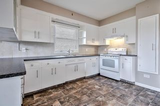 Photo 11: 226 24 Avenue NE in Calgary: Tuxedo Park Detached for sale : MLS®# A1070997