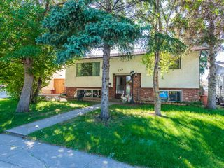 Photo 1: 239 Pinemill Road NE in Calgary: Pineridge Detached for sale : MLS®# A1021035