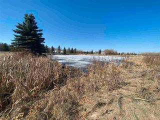 Photo 9: 46, 27118 HWY 18: Rural Westlock County Rural Land/Vacant Lot for sale : MLS®# E4238085