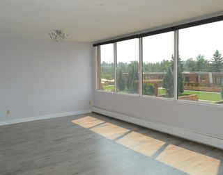 Photo 11: 508 330 26 Avenue SW in Calgary: Mission Apartment for sale : MLS®# A1100545