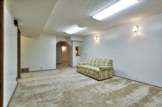 Photo 29: 12 GREER Crescent: St. Albert House for sale : MLS®# E4248514