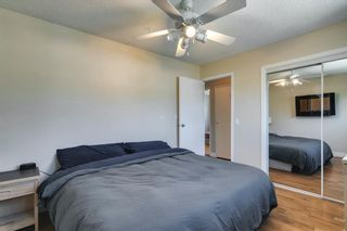 Photo 15: 111 Deerpath Court SE in Calgary: Deer Ridge Detached for sale : MLS®# A1121125