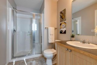 Photo 22: 169 Copperfield Lane SE in Calgary: Copperfield Row/Townhouse for sale : MLS®# A1152368