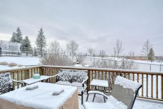 Photo 48: 262 Panamount Close NW in Calgary: Panorama Hills Detached for sale : MLS®# A1050562