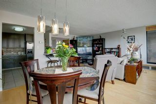 Photo 6: 503 330 26 Avenue SW in Calgary: Mission Apartment for sale : MLS®# A1105645