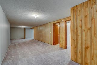 Photo 22: 236 QUEEN CHARLOTTE Way SE in Calgary: Queensland Detached for sale : MLS®# A1025137