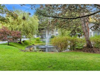 """Photo 2: 55 10038 150 Street in Surrey: Guildford Townhouse for sale in """"MAYFIELD GREEN"""" (North Surrey)  : MLS®# R2623721"""