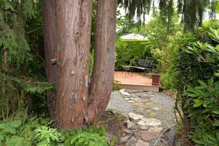 Photo 15:  in : Kitsilano House for rent (Vancouver East)  : MLS®# AR095