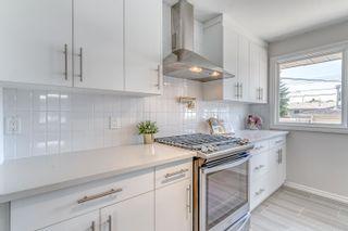 Photo 19: 9104 156 Street NW in Edmonton: Zone 22 House for sale : MLS®# E4254125