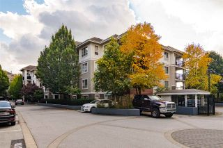 "Photo 1: C206 8929 202 Street in Langley: Walnut Grove Condo for sale in ""THE GROVE"" : MLS®# R2528966"