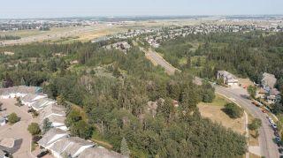 Photo 21: 40 BLACKBURN Drive W in Edmonton: Zone 55 House for sale : MLS®# E4255224
