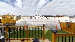 Photo 14: 2916 25 Avenue in Edmonton: Zone 30 House for sale : MLS®# E4264785