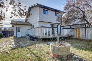 Photo 4: 7 PINEBROOK Place NE in Calgary: Pineridge Detached for sale : MLS®# C4221689