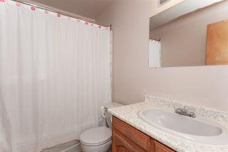 Photo 16: 20557 114 Avenue in Maple Ridge: Southwest Maple Ridge House for sale : MLS®# R2327151