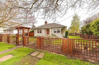 Photo 1: 1559 Bay St in VICTORIA: Vi Fernwood House for sale (Victoria)  : MLS®# 784514