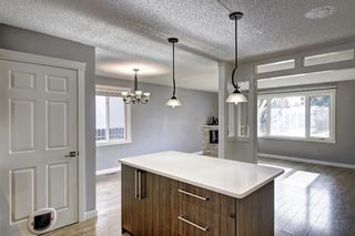 Photo 7: 4604 Maryvale Drive NE in Calgary: Marlborough Detached for sale : MLS®# A1090414