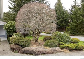 Photo 37: 8601 Deception Pl in : NS Dean Park House for sale (North Saanich)  : MLS®# 872278