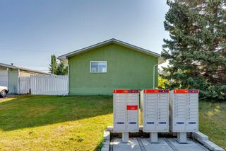 Photo 37: 302 Whitney Crescent SE in Calgary: Willow Park Detached for sale : MLS®# A1146432