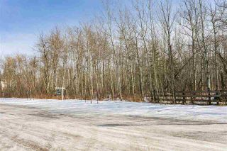 Photo 4: 4519 DONSDALE Drive in Edmonton: Zone 20 Vacant Lot for sale : MLS®# E4227514