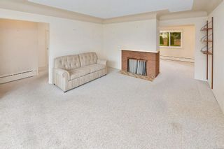 Photo 13: 1960 CARNARVON St in : SE Camosun House for sale (Saanich East)  : MLS®# 884485