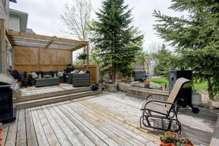 Photo 29: 50 Martha's Place NE in Calgary: Martindale Detached for sale : MLS®# A1119083