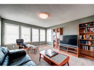 Photo 19: 23 AUTUMN Gardens SE in Calgary: Auburn Bay House for sale : MLS®# C4017577