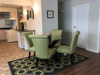Photo 3: 38890- 38892 GARIBALDI AVENUE in Squamish: Dentville Multifamily for sale : MLS®# R2179067