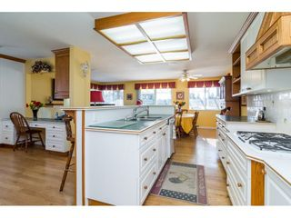 """Photo 6: 24570 52 Avenue in Langley: Salmon River House for sale in """"North Otter / Salmon River"""" : MLS®# R2136174"""