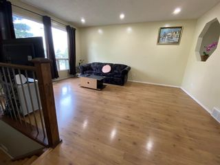 Photo 13: 68 Applewood Drive SE in Calgary: Applewood Park Detached for sale : MLS®# A1118968