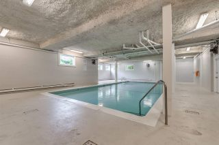 """Photo 19: 142 200 WESTHILL Place in Port Moody: College Park PM Condo for sale in """"WESTHILL PLACE"""" : MLS®# R2397916"""