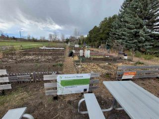 Photo 8: 10042 92 Street in Edmonton: Zone 13 Vacant Lot for sale : MLS®# E4243530