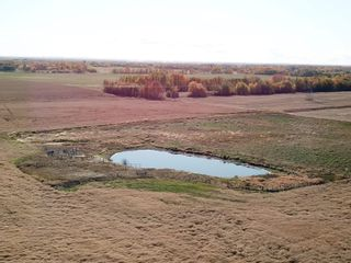 Photo 3: 51010 Rge Road 273: Rural Parkland County Rural Land/Vacant Lot for sale : MLS®# E4265089