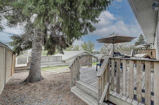 Photo 36: 4520 Namaka Crescent NW in Calgary: North Haven Detached for sale : MLS®# A1147081