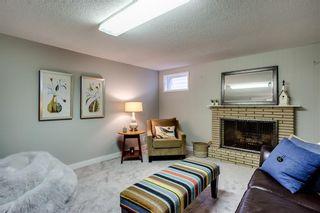 Photo 46: 7319 KEEWATIN Street SW in Calgary: Kelvin Grove Detached for sale : MLS®# C4276141